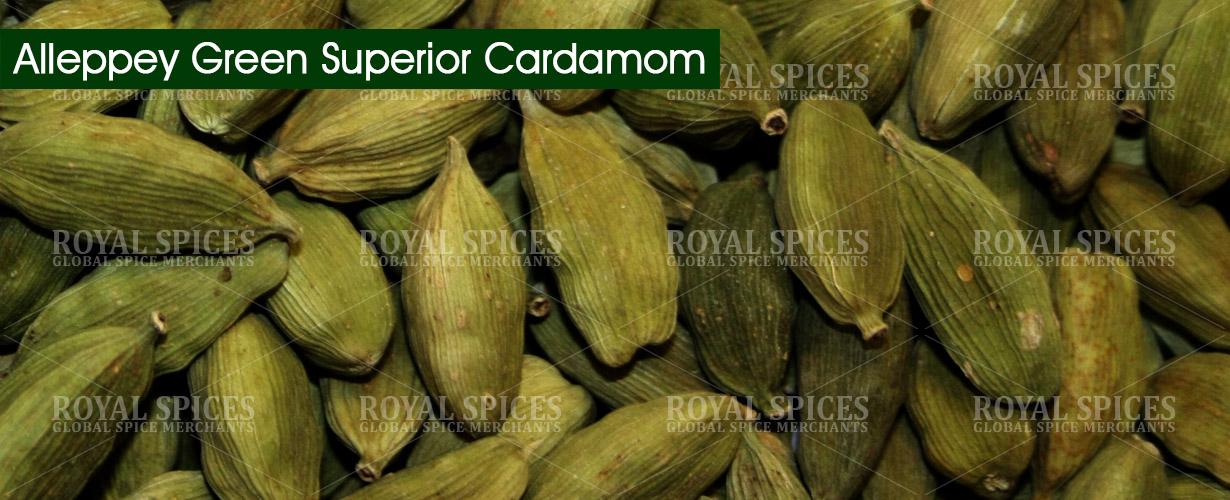 alleppey-green-superior-cardamom