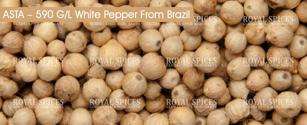 asta-590-gl-white-pepper-from-brazil