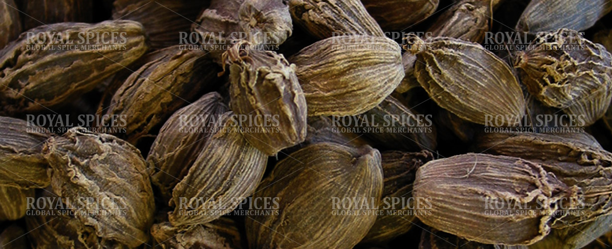 Nepal Big Cardamom - Exporter and Supplier of Nepal Large