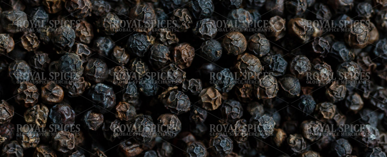 Vietnam Black Pepper - Exporter and Supplier of Black Pepper from