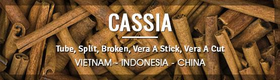 cassia from vietnam