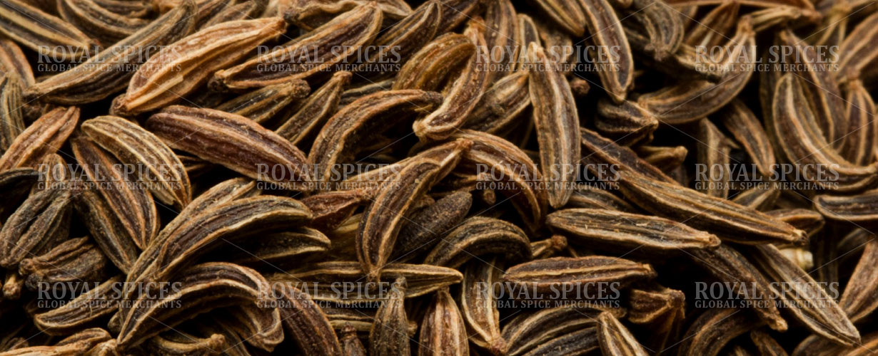 Syrian Cumin Seed - Cumin Seed Exporter and Supplier from Syria