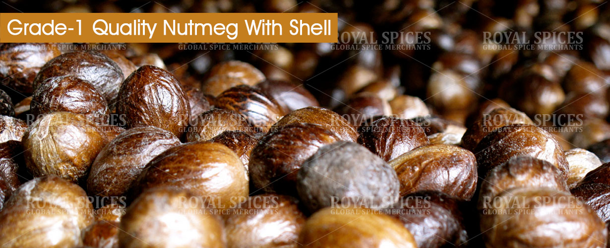 grade-1-quality-nutmeg-with-shell