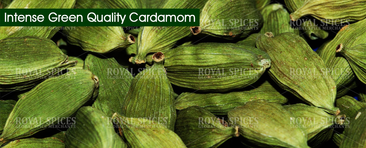 intense-green-quality-cardamom