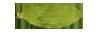 llg-lanka-light-geen-cardamom-medium-quality
