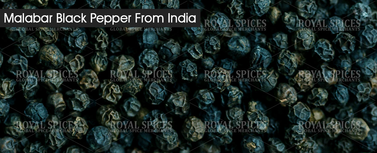 malabar-black-pepper-from-india
