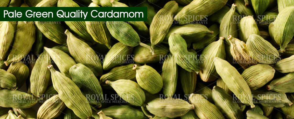 pale-green-quality-cardamom