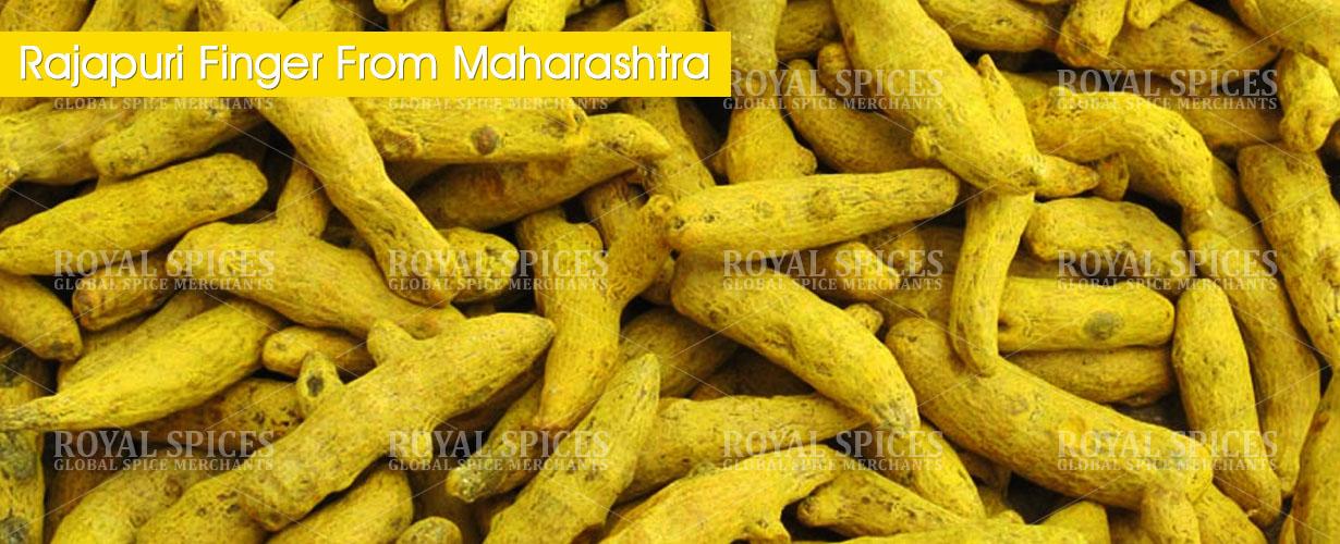 rajapuri-turmeric-fingers-from-maharashtra