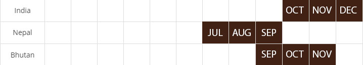 big cardamom harvest calendar