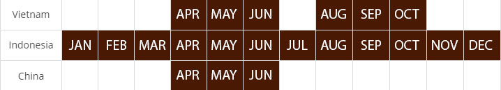 cassia harvest calendar