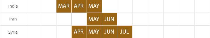 cumin seed harvest calendar