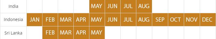 nutmeg harvest calendar