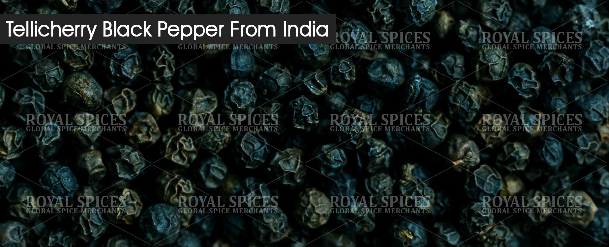 tellicherry-black-pepper-from-india